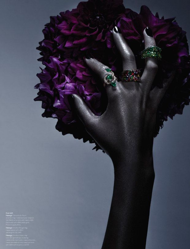 Rui-Faria-Wylde-Magazine-05